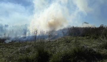Imagen de Otro incendio en Dolores, esta vez se quemó un terreno
