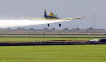 Imagen de La Provincia: el Defensor del Pueblo pidió un marco regulatorio para las fumigaciones