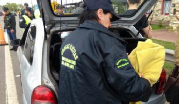 Imagen de La policía secuestró droga en multioperativo efectuado en la región