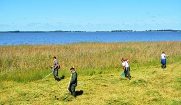 Imagen de Comenzó el operativo de saneamiento de la costanera de la laguna de Chascomús