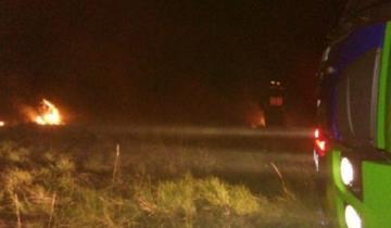 Imagen de Incendio en la Ruta 11: se prendieron fuego 25 hectáreas