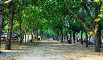 Imagen de Verano 2021: la Provincia autorizó la apertura de los campings desde el 1º de diciembre