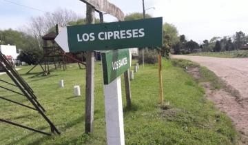 Imagen de Cuánto dinero será la base de la subasta para los terrenos en el Paraje Las Chacras, en General Lavalle