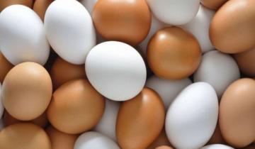 Imagen de Se celebra la Semana Mundial del Huevo
