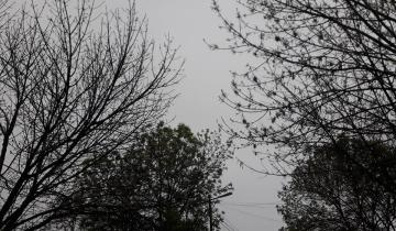 Imagen de Alerta meteorológico: se esperan fuertes tormentas en la región