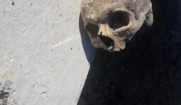 Imagen de Encontraron un cráneo humano sobre la Ruta 56