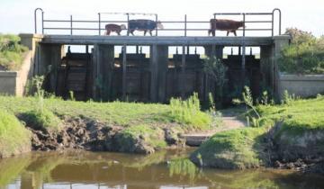 Imagen de Autoridades provinciales expondrán sobre la cuenca del Canal 5