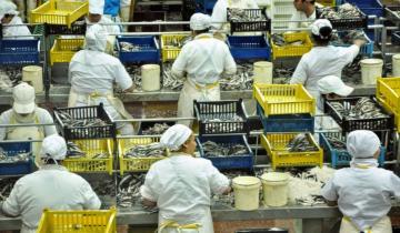 Imagen de Cómo es el programa de promoción de la actividad pesquera que lanzó la Provincia