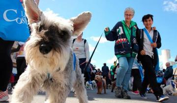 Imagen de Se realiza la 2ª caminata con perros en Santa Teresita