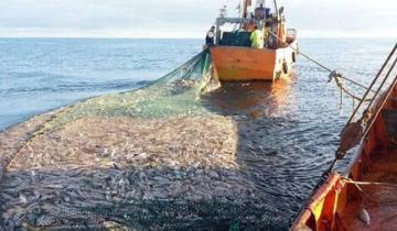 Imagen de General Lavalle: cómo será el protocolo para la temporada de pesca de la corvina negra