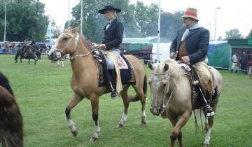 Imagen de ¿Por qué se celebra hoy el Día Nacional del Gaucho?