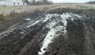 Imagen de Confirmaron que continuarán las obras para reparar caminos rurales