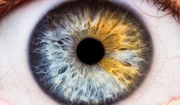 Imagen de Chequeos gratuitos para prevenir problemas visuales a personas con diabetes