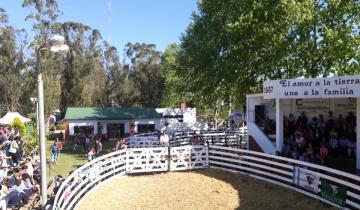 Imagen de Continúa la Expo Rural en Dolores