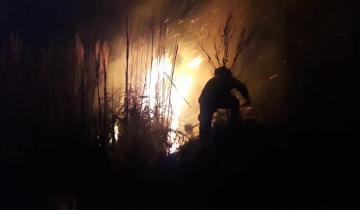 Imagen de Anoche se desató un incendio forestal en la Ruta 11