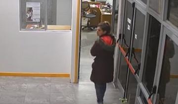 Imagen de Video: mirá cómo una mujer espera el momento ideal para cometer un robo en Mar del Plata