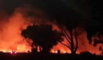 Imagen de La Costa: un voraz incendio se desató en Punta Rasa