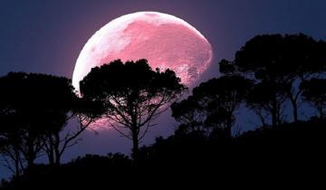 """Imagen de Llega la """"Luna Rosa"""": qué es y dónde se puede ver"""