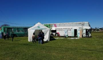 Imagen de Coronavirus: un laboratorio móvil que obtiene resultados en dos horas estará en General Alvarado y Mar del Plata