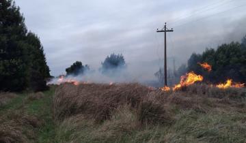 Imagen de Lo había advertido el SMN: incendio de pastizales en la Autovía 2