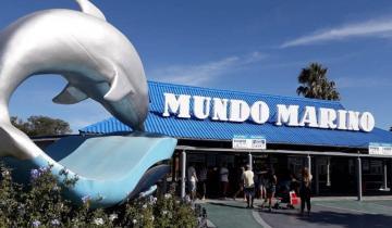 Imagen de Verano 2021: Mundo Marino vuelve a recibir al público desde el 4 de diciembre con estrictos protocolos