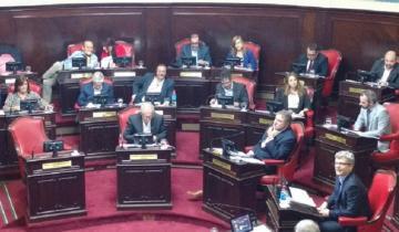 Imagen de El Senado declara de Interés Provincial investigaciones sobre Cannabis Medicinal
