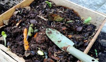 Imagen de Lavalle impulsa una ambiciosa iniciativa para reducir el 50% de los residuos hogareños