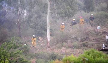 Imagen de Bomberos de toda la región combaten un voraz incendio en las sierras de Tandil