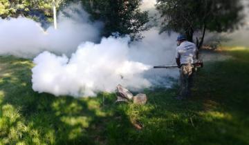 Imagen de Un hombre de Berisso es el cuarto fallecido por dengue en la Provincia
