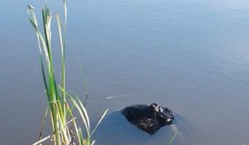 Imagen de Estaba ebrio, cayó a un barranco y murió ahogado