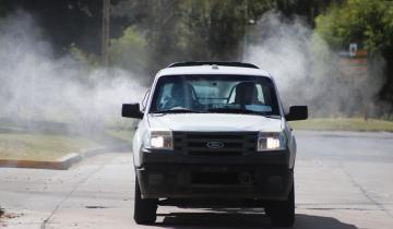Imagen de El silencioso avance del dengue en Argentina: ya hay más de 14 mil casos confirmados