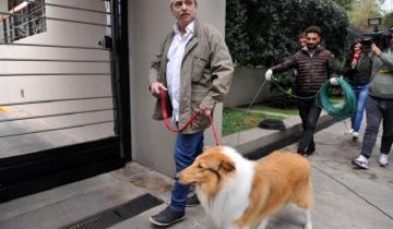 Imagen de Se hizo viral: le dieron el alta a Alberto Fernández y así lo recibió su perro Dylan