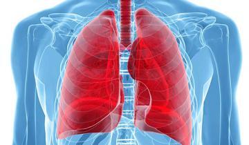 Imagen de Tuberculosis: cuáles son sus síntomas y cómo prevenirla