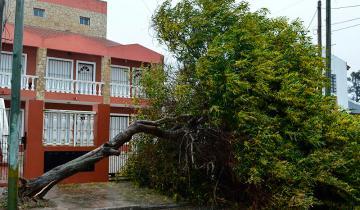 Imagen de Otro alerta por tormentas fuertes y caída de granizo para la región