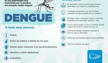 Imagen de Cuáles son los síntomas y la prevención ante el dengue