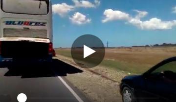 Imagen de Otro video de los peligros de la ruta 11: vehículos por la banquina