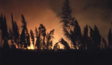 Imagen de El video del feroz incendio en Punta Rasa
