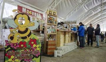 Imagen de Se vienen la Expo Miel y Maipú en Concierto