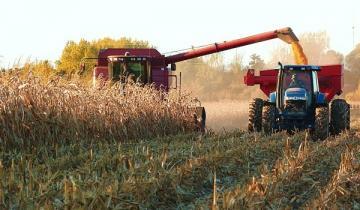 Imagen de Ante la crisis cae el optimismo de los productores agropecuarios