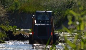 Imagen de Iniciaron la limpieza de los canales a cielo abierto en Madariaga