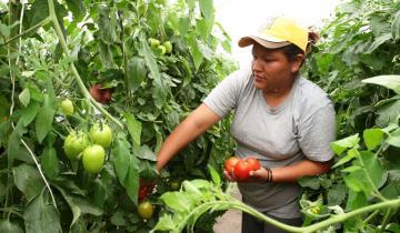 Imagen de Hoy es el Día Internacional de las Mujeres Rurales