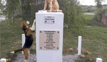 Imagen de La tierna imagen de un perrito queriendo alcanzar el monolito de Rubio