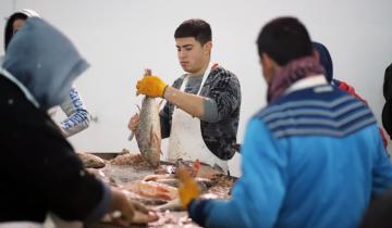 Imagen de Pese a la crisis nacional, el pescado de La Costa se venderá en Francia