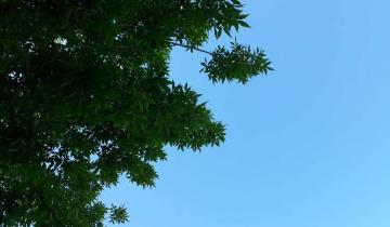Imagen de Domingo a puro sol en toda la región