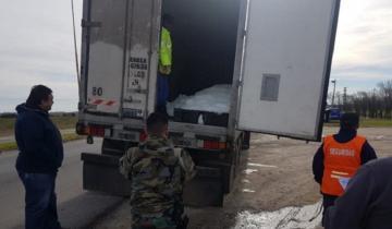 Imagen de Secuestraron 24 mil kilos de pescado fresco en dos camiones que circulaban por la Ruta 11