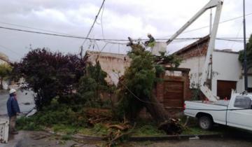 Imagen de El temporal causó importantes destrozos en Pigüé y Puan