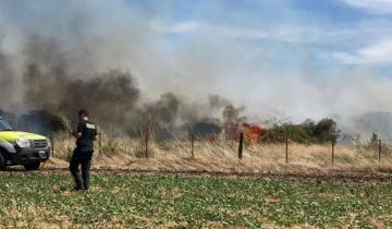 Imagen de Bomberos hallan un cadáver calcinado cuando apagaban un incendio en la Ruta 88