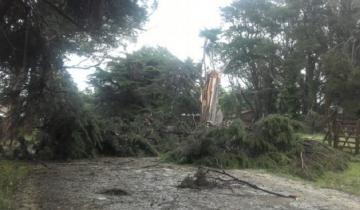 "Imagen de Video: una ""tromba marina"" causó graves destrozos en Santa Clara del Mar"