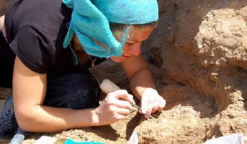 Imagen de Miramar: hallaron una rata espinosa fósil de más de 400 mil años de antigüedad
