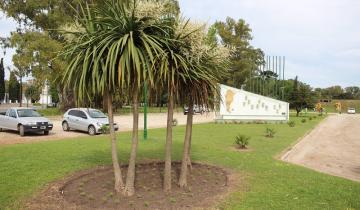 Imagen de Mejora de caminos rurales y de la Plazoleta Rotary Club en Dolores
